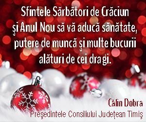 Calin Dobra - Presedintele Consiliului Judetean Timis